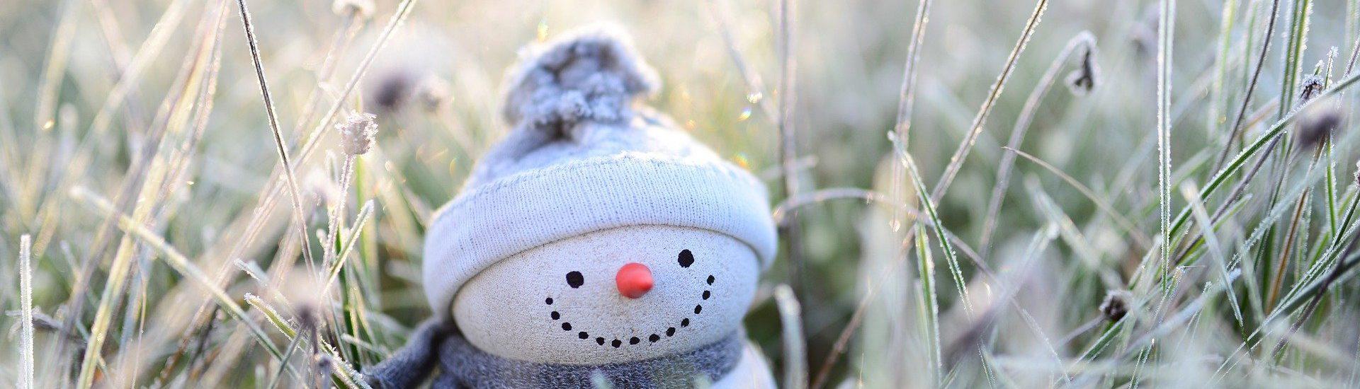 Illus Que faire en hiver